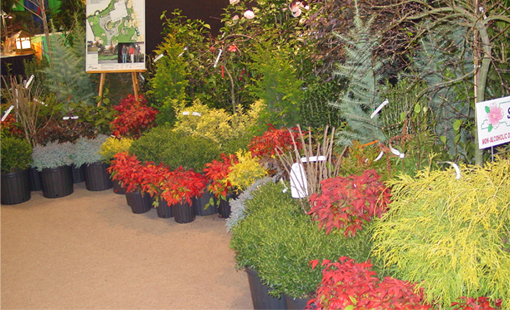 Wind Chime Nursery in the Winston Salem NC area sells trees and shrubs and provides free landscaping advice to help you arrange your new plants so that they will make your landscaping project beautiful.